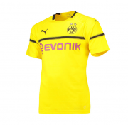 Borussia Dortmund Cup 18-19 Cup Home Yellow Soccer Jersey Shirt